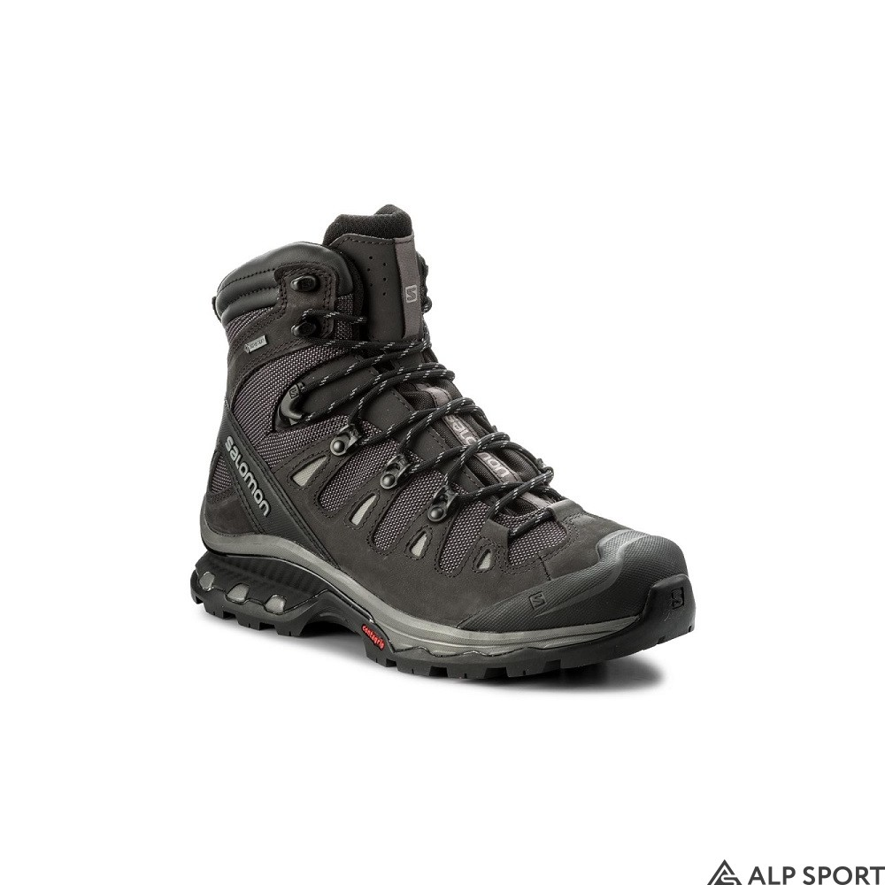 Ботинки Salomon Quest 4D 3 GTX купить